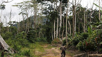 Afrique : les terres en danger
