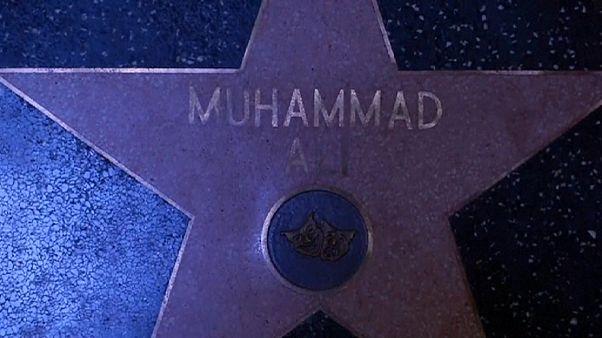 محمد علي نجم هوليود