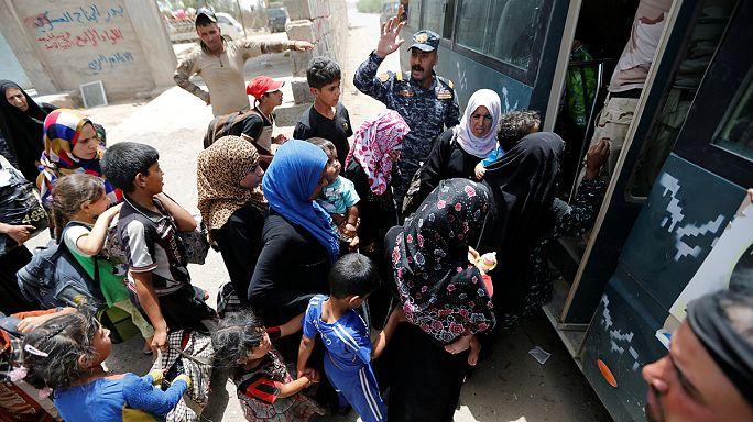 L'État islamique encerclé à Falloujah, les civils fuient la ville