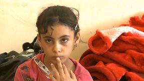 Familien fliehen aus Falludscha