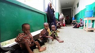 7.2 million people in Sahel region at risk of imminent hunger