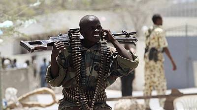 African Union commits to fight against illicit small arms trade