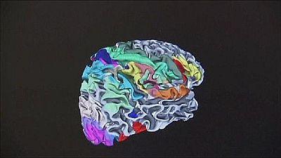 """""""Holoxica"""", l'hologramme qui permet de voyager à l'intérieur du cerveau"""