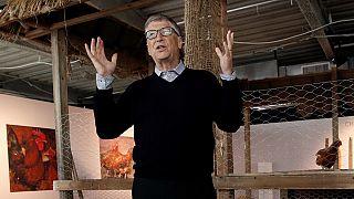 Bill Gates s'intéresse aux poulets