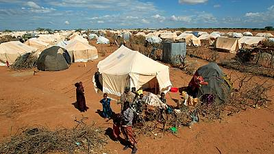 International principles should be followed in repatriating Dadaab refugees - UNHCR