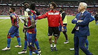 Adebayor, Chamakh released by Crystal Palace