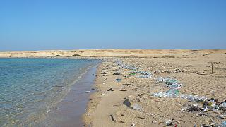 6,5 millions de tonnes de plastique par an : le calvaire des océans