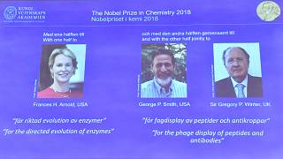 Image: The 2018 Nobel Prize laureates for Chemistry are shown on the screen