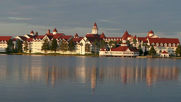Alligator drags toddler into Disney lagoon