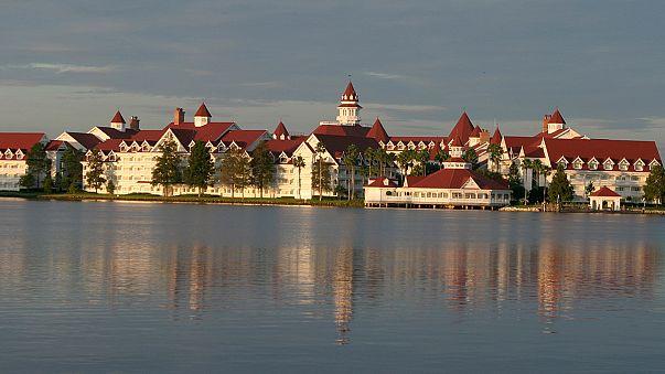 Alligator drags toddler into Disney lagoon