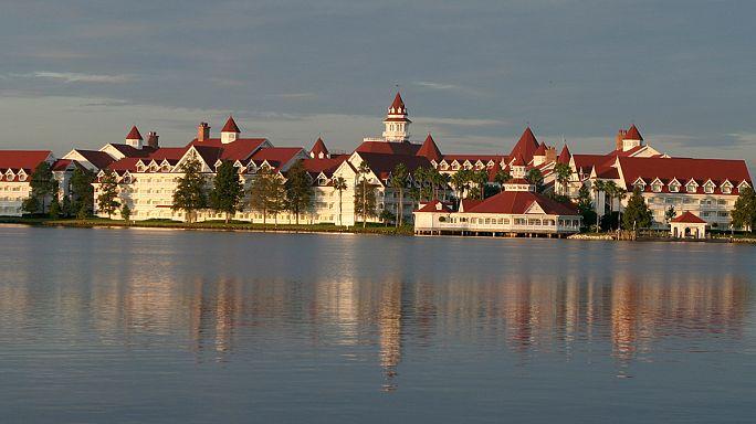 """Novo drama em Orlando: Jacaré """"caça"""" criança de 2 anos em lagoa da Disney"""