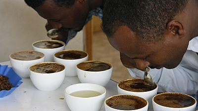 Il n'y a pas de preuves définitives que le café est source de cancer selon l'OMS