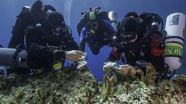 Ναυάγιο Αντικυθήρων: Νέα ευρήματα από τις έρευνες στον βυθό της θάλασσας