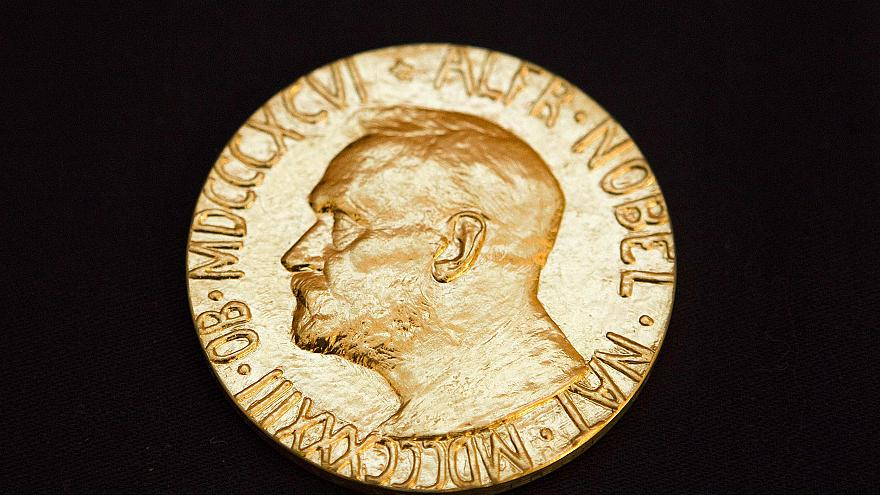 Image: The front of the Nobel medal awarded to the Nobel Peace Prize laurea