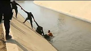 Peruvian police rescue dog trapped in canal