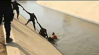 Perú: varios policías rescatan a un perro que cayó en un canal