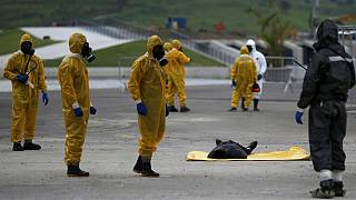 Brazilian authority simulate security operations for Rio 2016
