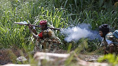 16 personnes tuées en Centrafrique
