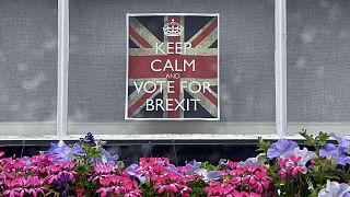 Reino Unido: Farage y Gove salieron a votar por el 'Brexit'
