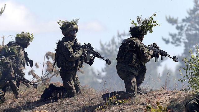 """Бывший Главком ВВС Италии : """"влияние США на НАТО стало неприемлемым"""""""