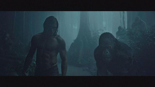 """Alexander Skarsgård ist der neue """"Tarzan"""""""