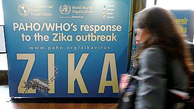 Zika : deux vaccins efficaces contre des souris, espoir pour l'homme