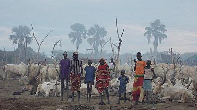 Soudan du Sud : grande famine à l'horizon (ONU)