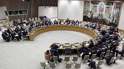 L'Éthiopie élue au Conseil de sécurité de l'ONU pour deux ans