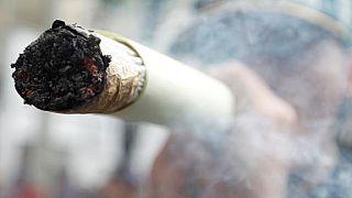 Canada govt forms panel to advise on marijuana legalization