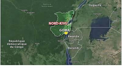 DRC: Gov't forces clash with militia