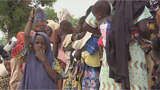 Boko Haram insurgency's ripple effect - acute malnutrition