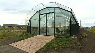 Living by the light in a glasshouse
