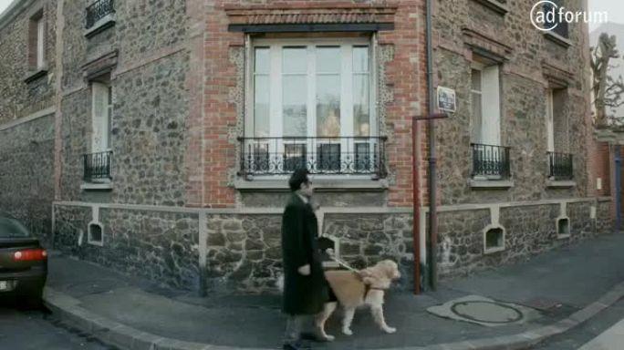 Les Chiens guides  (Fédération Française des Association de Chiens guides d'Aveugles)