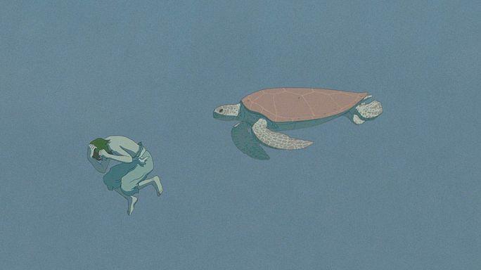 """Внимание, """"Красная черепаха""""!"""