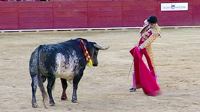 Meghalt egy matador Spanyolországban