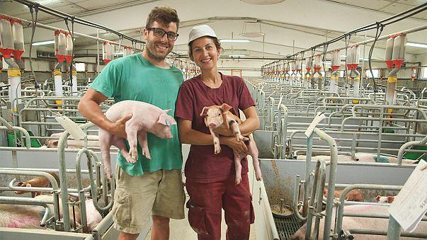 Ученые ЕС призвали любителей мяса защищаться