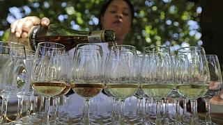 Zuma in France, says South African wine is the best