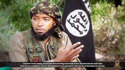 Somalie : Al-Shabaab menace la Turquie et appelle à un soulèvement