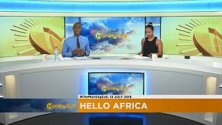 Niger Delta Avengers continue havoc [The Morning Call]