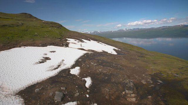 Deshielo de la investigación: ¿cómo funcionan los ecosistemas en regiones extremadamente frías?