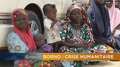 Humanitarian crisis in Borno [The Morning Call]