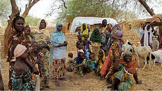 Nigeria: UNICEF reacts to humanitarian crisis in Borno