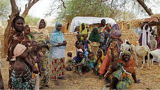 Nigeria : situation humanitaire d'urgence dans le Borno selon l'UNICEF