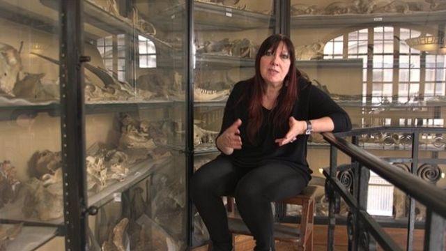 Un nouveau regard sur Neandertal