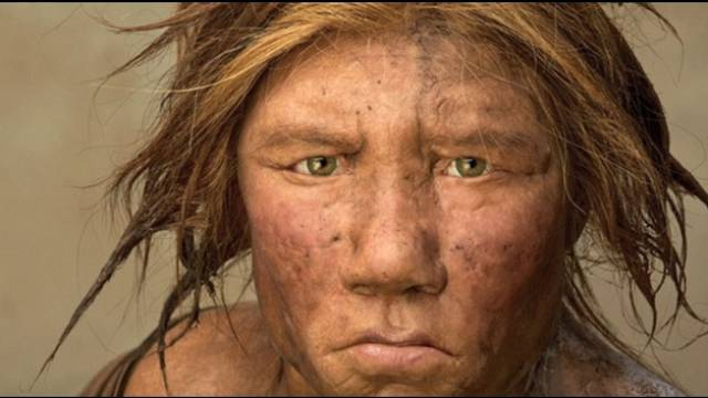 Des nouvelles de Neandertal