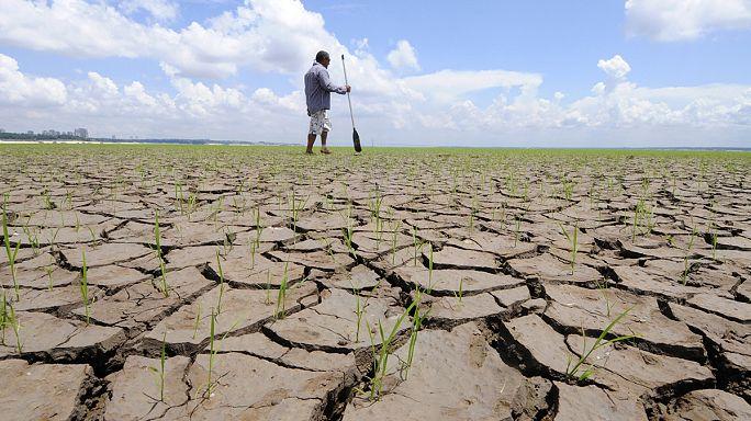 Klimawandel: 2016 könnte wärmstes Jahr der Geschichte werden