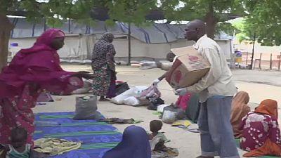 Nigeria : risque de désastre humanitaire dans l'État de Borno