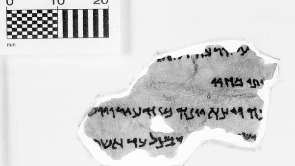 Bible museum withdraws five Dead Sea Scroll fragments as possible fakes