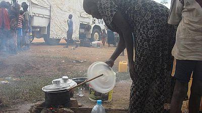 La Minuss appelle à une aide humanitaire d'urgence au Soudan du Sud