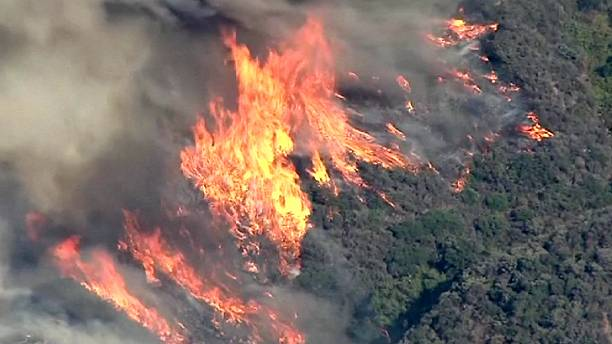 Firefighters battle fast-moving California wildfire